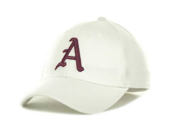 Arkansas Razorbacks Top of the World White One Fit images, details and specs