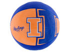 Illinois Fighting Illini Jarden Sports Alley Oop Youth Basketball Outdoor & Sporting Goods