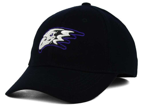 Niagara Purple Eagles Top of the World NCAA PC Cap Hats