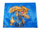 Kentucky Wildcats Rico Industries Car Flag Auto Accessories