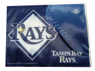 Tampa Bay Rays Rico Industries Car Flag Auto Accessories