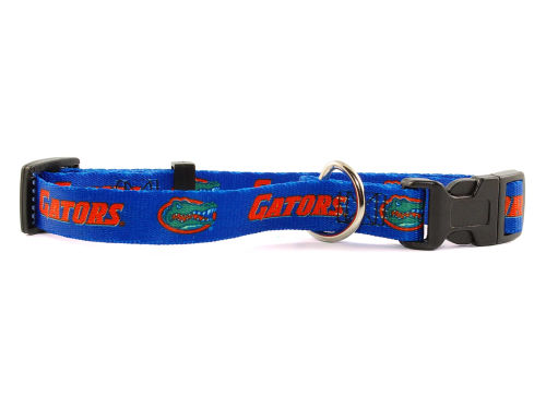 Florida Gators Medium Dog Collar