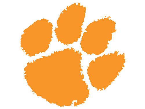 Clemson Tigers 12in Car Magnet