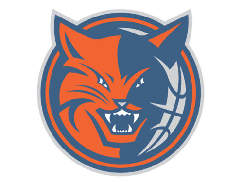 Charlotte Bobcats Rico Industries Static Cling Decal