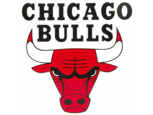 Chicago Bulls Rico Industries Static Cling Decal
