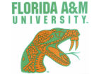 Florida A&M Rattlers Rico Industries Static Cling Decal Auto Accessories