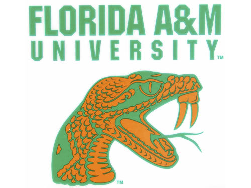 Florida A&M Rattlers Rico Industries Static Cling Decal