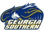 Georgia Southern Eagles Rico Industries Static Cling Decal Auto Accessories