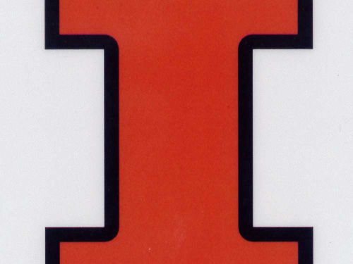 Illinois Fighting Illini Rico Industries Static Cling Decal