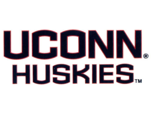 Connecticut Huskies Rico Industries Static Cling Decal