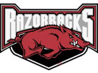 Arkansas Razorbacks Vinyl Decal Auto Accessories