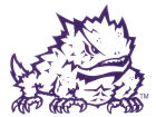 Texas Christian Horned Frogs Rico Industries Static Cling Decal Auto Accessories