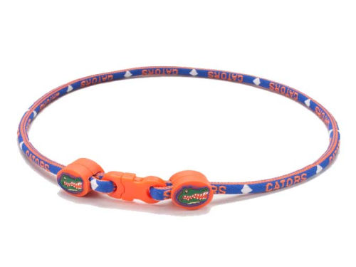 Florida Gators NCAA Titanium Necklace 21in