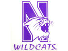 Northwestern Wildcats Rico Industries Static Cling Decal Auto Accessories