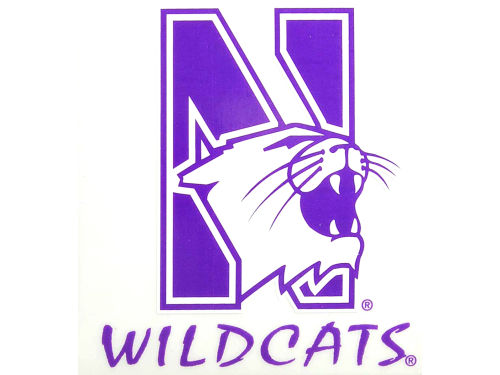 Northwestern Wildcats Rico Industries Static Cling Decal