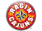 Louisiana Lafayette Ragin Cajuns Rico Industries Static Cling Decal Auto Accessories