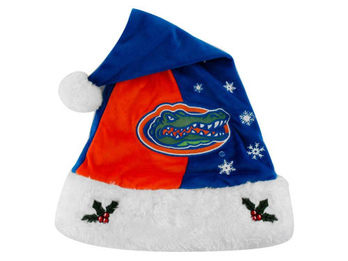Florida Gators Forever Collectibles Team Logo Santa Hat