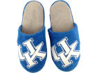 Kentucky Wildcats Forever Collectibles Big Logo Slippers Apparel & Accessories