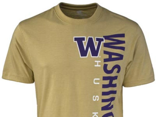 Washington Huskies Colosseum NCAA Viper T-Shirt