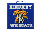 Kentucky Wildcats Wincraft Seat Cushion Gameday & Tailgate