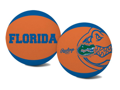 Florida Gators Jarden Sports Alley Oop Youth Basketball