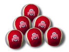 Ohio State Buckeyes 6 Pack Catch and Fetch Balls Pet Supplies
