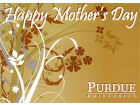 Purdue Boilermakers Mothers Day Card Home Office & School Supplies
