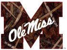 Mississippi Rebels Collegiate Camo Large Decal Auto Accessories
