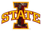 Iowa State Cyclones Collegiate Camo Large Decal Auto Accessories