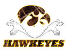Iowa Hawkeyes Collegiate Camo Large Pheasant Decal Auto Accessories