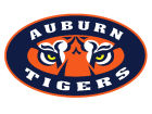 Auburn Tigers 12x12 Magnet Auto Accessories