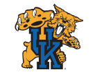 Kentucky Wildcats 3x6 Magnet Auto Accessories