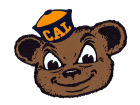 California Golden Bears 4x4 Magnet Auto Accessories
