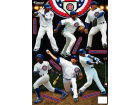 Chicago Cubs Fatheads Tradeables Team Set-MLB Toys & Games