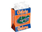 Florida Gators Gift Bag Medium NCAA Holiday