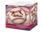 St. Louis Cardinals Sticky Note Cube Home Office & School Supplies