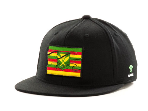 Billabong Native-Hawaii Flex Cap Hats