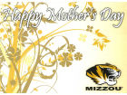 Missouri Tigers Mothers Day Card Home Office & School Supplies