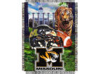 Missouri Tigers The Northwest Company 48x60 College Vault Woven Throw Bed & Bath