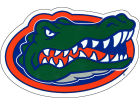Florida Gators NCAA 5.25 x 8 Logo Magnet Pins, Magnets & Keychains