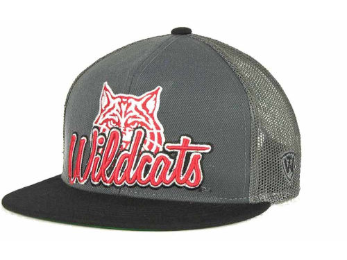 Arizona Wildcats Top of the World NCAA Undergrad Mesh Back Snapback Cap Hats