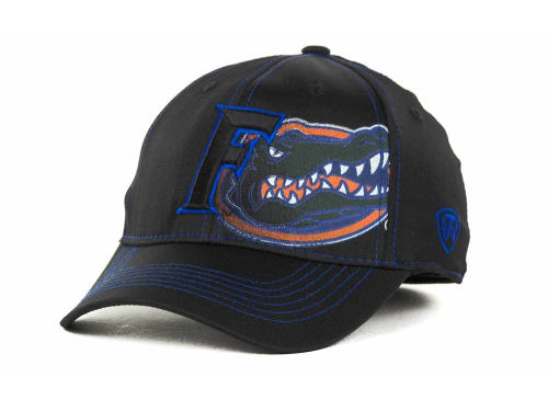 Florida Gators Top of the World NCAA Hidden Dip Cap Hats