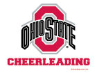 Ohio State Buckeyes Wincraft 3x4 Ultra Decal Bumper Stickers & Decals