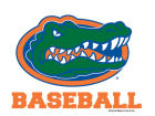 Florida Gators Wincraft 3x4 Ultra Decal Auto Accessories