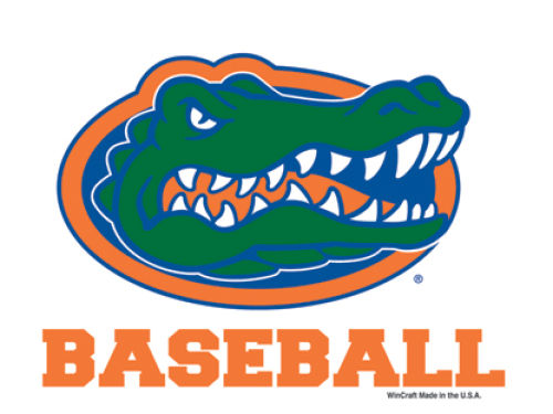 Florida Gators Wincraft 3x4 Ultra Decal