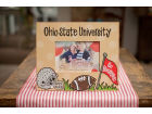 Ohio State Buckeyes Artwork Frame 10x12 Home Office & School Supplies