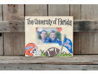 Florida Gators Artwork Frame 10x12 Home Office & School Supplies
