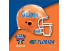Florida Gators Wincraft 2013 Sugar Bowl Towel Collectibles