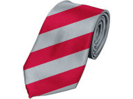 Thick Strip Necktie Apparel & Accessories