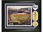 Tampa Bay Rays Highland Mint Photo Mint Coin-Bronze Collectibles